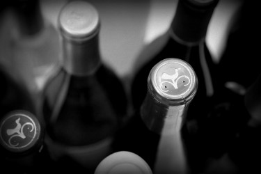 Picture of Hartford Wines