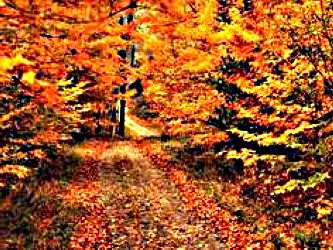 Connecticut-Fall-Scenery-Image